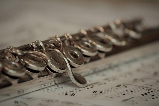 Mozart Concerto No. 1 in G, K313, 1st Movement