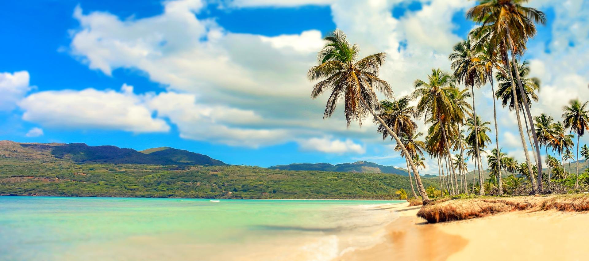 Paradise George Ezra